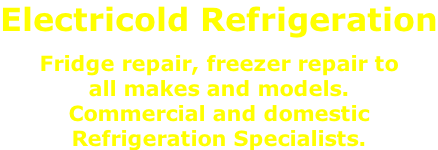 Electricold Refrigeration   Fridge repair, freezer repair to  all makes and models. Commercial and domestic  Refrigeration Specialists.